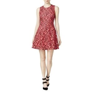 Madison Jules Floral Lace Fit and Flare Dress S